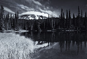 Rainier Prints - Rainier Capped Print by Mike  Dawson
