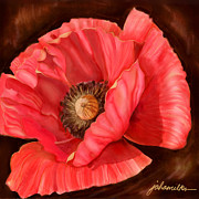 Red Poppy Two Print by Joan A Hamilton