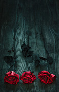 Bunch Digital Art - Red Roses by Svetlana Sewell