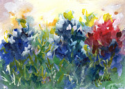 Texas Wildflowers Posters - Red White and Bluebonnet Poster by Kathleen McElwaine