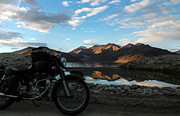 Enfield Prints - Rider at Pangong Print by Rohit Chawla