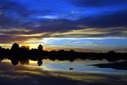Tam Ryan - Riparian Preserve Sunset