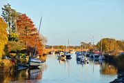 Susie Peek-Swint - River Frome At Wareham