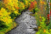 A River In Autumn Posters - River In Autumn Poster by Pat Now