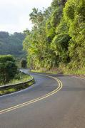 Featured Metal Prints - Road to Hana Metal Print by Jenna Szerlag