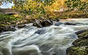 Adrian Evans - Rocky River