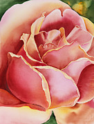 Rose Garden Painting Framed Prints - Rose  Framed Print by Irina Sztukowski