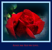 Are Posters - Roses Are Red My Love Poster by Susanne Van Hulst