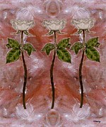 Greetings Cards Mixed Media Framed Prints - Roses Framed Print by Patrick J Murphy