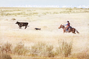 Cattle Ranch Prints - Round Up Print by Cindy Singleton