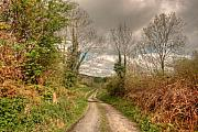 County Clare Framed Prints - Rural Irish Road Framed Print by John Quinn