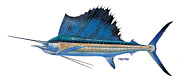 Fish Art Posters - Sailfish Poster by Carey Chen