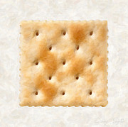 Studio Shot Paintings - Saltine Cracker by Danny Smythe