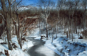 Snow Scene Painting Originals - Same Creek Different Place by Denny Dowdy