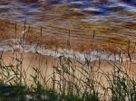 Lake Michigan Digital Art Metal Prints - Sand Grass II Metal Print by Bill Noonan
