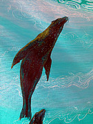 Debbie Chamberlin Posters - Sea Lions Of The Galapagos Poster by Debbie Chamberlin
