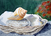 Watercolor By Irina Posters - Sea Shells Poster by Irina Sztukowski