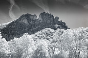 Mary Almond - Seneca Rocks in Infrared