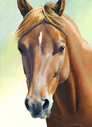 Chestnut Horse Paintings - Serenity by Alecia Underhill