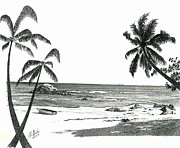 Landscapes Drawings - Seychelles Beach by Jimmy McAlister
