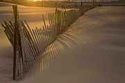 Sand Fences Framed Prints - Shadows Framed Print by Timothy Johnson