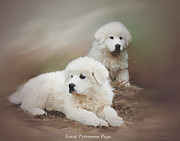 Puppies Digital Art Posters - Sitting Pretty Poster by Bonnie Willis