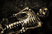 Tomb Photos - Skeleton  by Christopher and Amanda Elwell