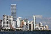 Miami Skyline Art - Skyline Miami by Christiane Schulze