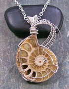 Sand Jewelry - Sliced Ammonite Fossil And Silver Lattice Pendant by Heather Jordan