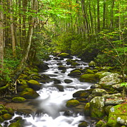 Drop Prints - Smoky Mountain Stream Print by Robert Harmon