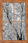 Winter Photos Framed Prints - Snowy Tree Branches Barn Wood Picture Window Frame View Framed Print by James Bo Insogna