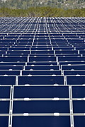 Solar Panels In Farm Print by Sami Sarkis