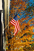 Usa Flags Prints - Standing Proud Print by Joann Vitali