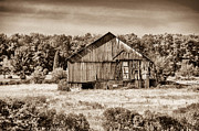 Pa Barns Prints - Still Standing Print by Guy Whiteley