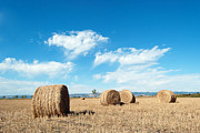 Horizon Pyrography Metal Prints - Straw Bales at a Stubbel Field Metal Print by Svetoslav Radkov