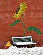 Mural Photos - Sunflower and Snow by Chris Berry