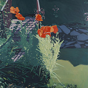 Malcolm Warrilow - Sunny Garden Poppies