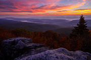 Bear Rocks Posters - Sunrise at Dolly Sods in West Virginia Poster by Jetson Nguyen