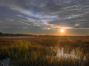 Susan Edens - Sunset Over the Marsh