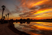 Yuma Posters - Sunset Reflections Poster by Robert Bales