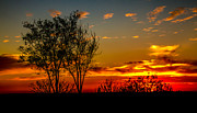 Desert Photography Posters - Sunset  Poster by Robert Bales