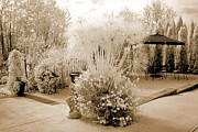 Infrared Nature Art Prints Photos - Surreal Ethereal Infrared Sepia Nature Landscape  by Kathy Fornal