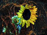 Masking Digital Art Posters - Surrealistic Sunflower Poster by J Larry Walker