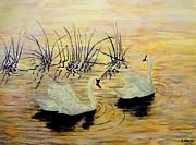 Swans Print by Svetla Dimitrova