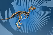 Carol and Mike Werner - T. rex Dinosaur Skeleton