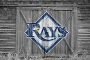Baseball Glove Posters - Tampa Bay Rays Poster by Joe Hamilton