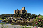 Battlement Posters - Templar Castle of Almourol Poster by Lusoimages