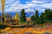 Photographic Art Metal Prints - Teton Autumn Metal Print by Greg Norrell