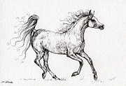 Horse Drawings - The Arabian Mare Running  by Angel  Tarantella