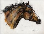 Bay Horse Drawings - The Bay Horse by Angel  Tarantella